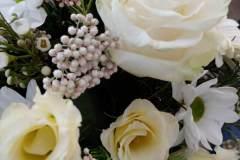 fiori-recisi