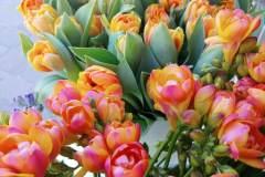 fiori-recisi_04