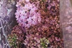 fiori-recisi_07