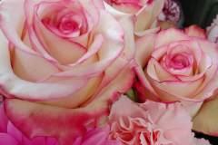 fiori-recisi_08